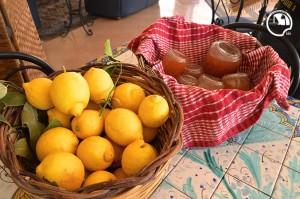bed and breakfast avola, colazione con marmellate arance limoni biologici